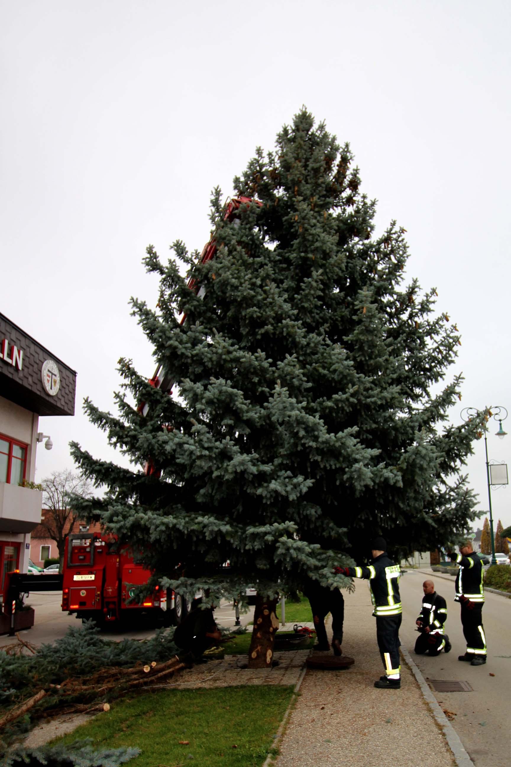 Der Weihnachtsbaum.Der Weihnachtsbaum Vor Dem Feuerwehrhaus Stadtfeuerwehr Tulln